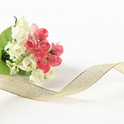 Bröllopsband